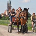 La calèche du Rittweg vous promène dans une Calèche bachée en Alsace